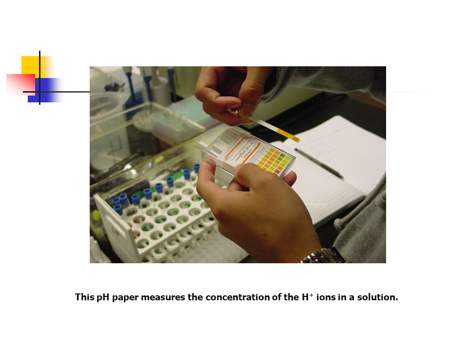 This pH paper measures the concentration of the H + ions in a solution.
