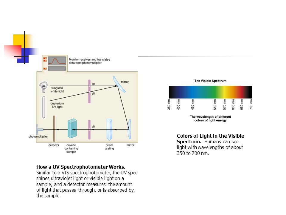 How a UV Spectrophotometer Works.