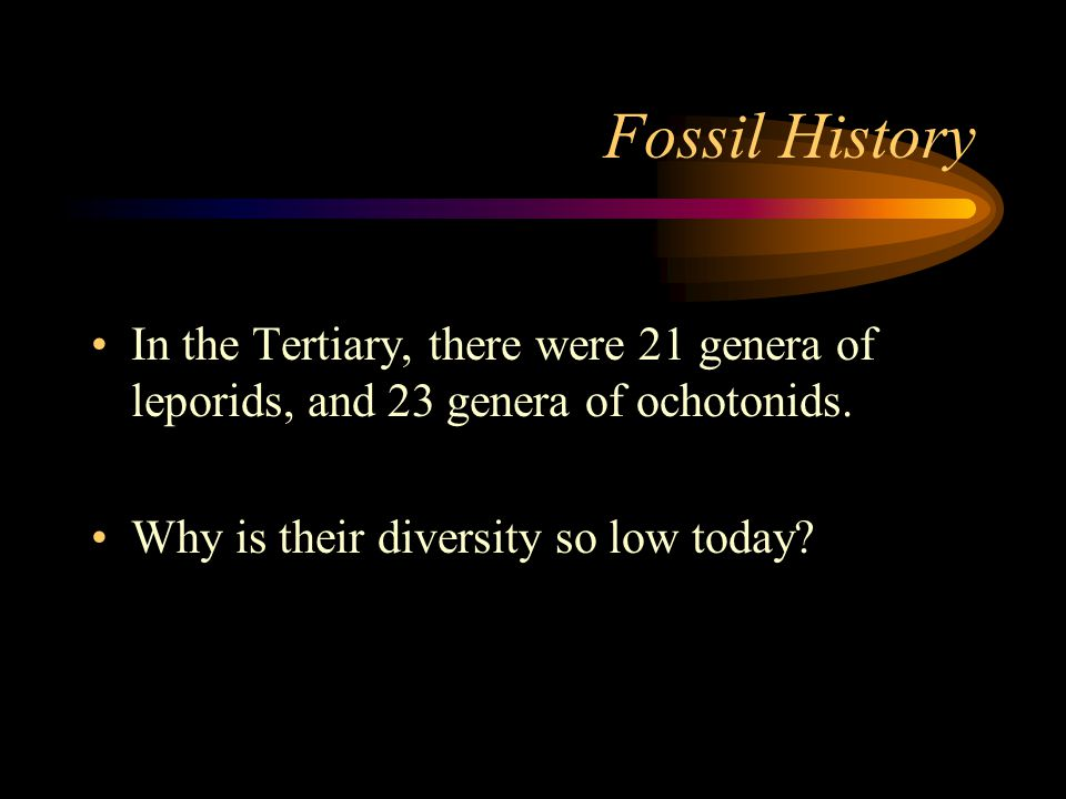 Fossil History In the Tertiary, there were 21 genera of leporids, and 23 genera of ochotonids.