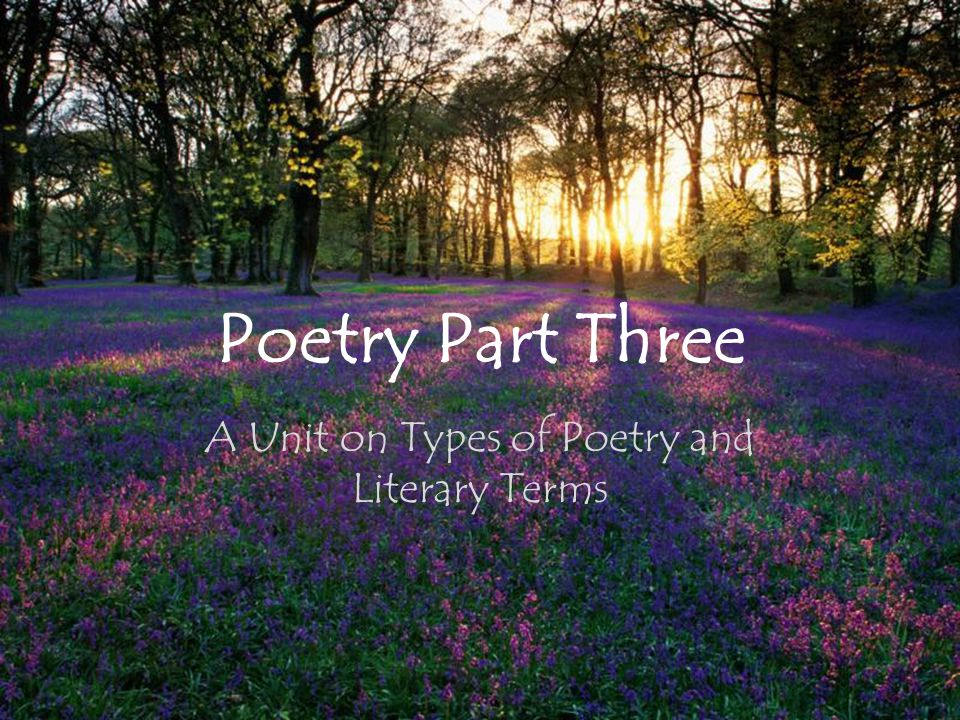 Poetry Part Three A Unit on Types of Poetry and Literary Terms