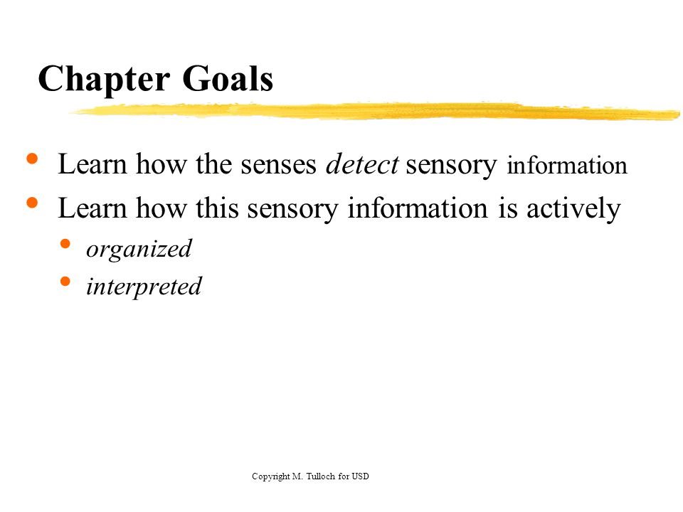 Chapter Goals Learn how the senses detect sensory information Learn how this sensory information is actively organized interpreted Copyright M.
