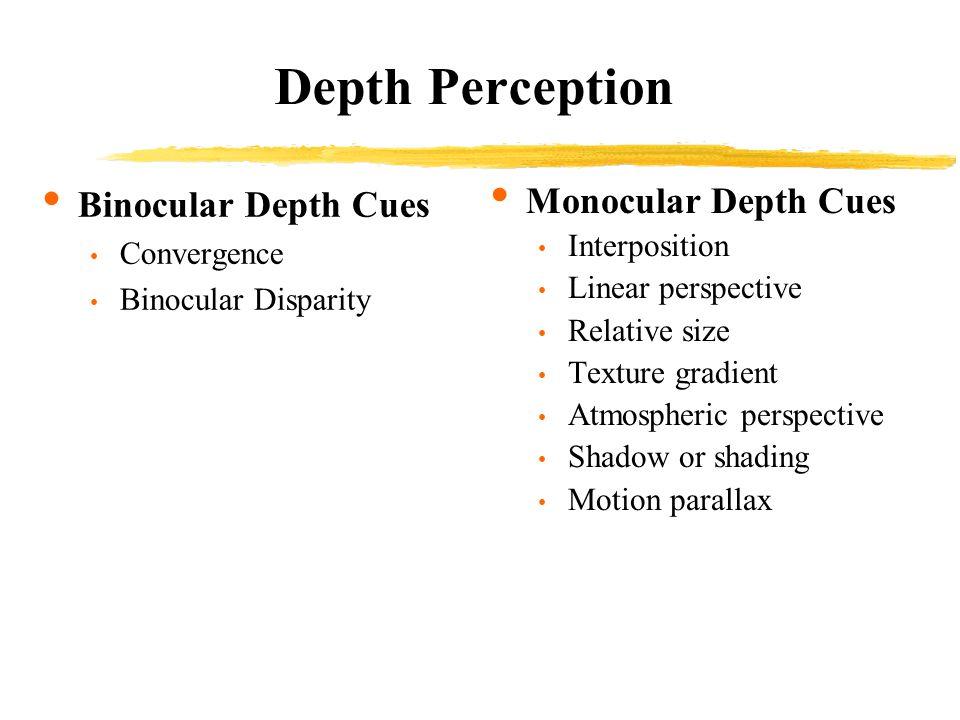 Gestalt Principals of Perceptual Organization, Cont.