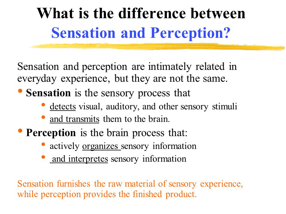 What is the difference between Sensation and Perception.
