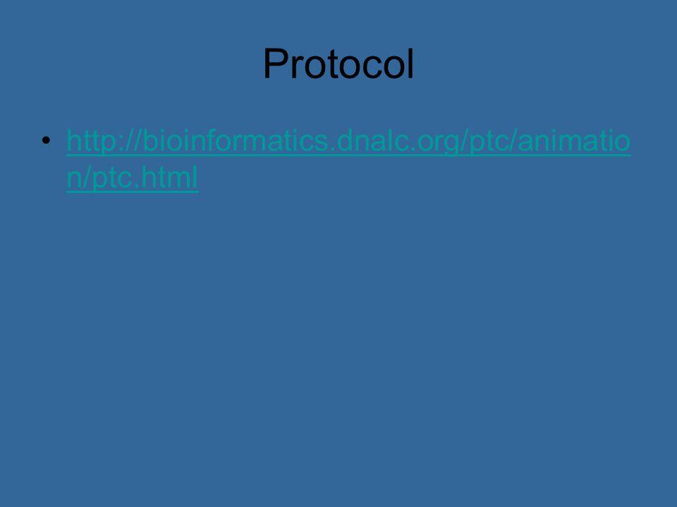 Protocol http://bioinformatics.dnalc.org/ptc/animatio n/ptc.htmlhttp://bioinformatics.dnalc.org/ptc/animatio n/ptc.html