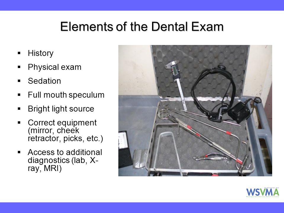 Elements of the Dental Exam  History  Physical exam  Sedation  Full mouth speculum  Bright light source  Correct equipment (mirror, cheek retrac