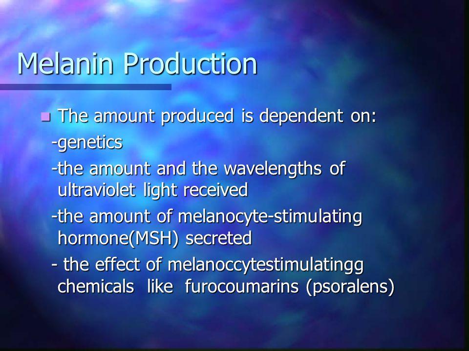 Hemosiderin Hyperpigmnetation Pigmentation due to deposits of hemosiderin occurs in: Pigmentation due to deposits of hemosiderin occurs in: -purpura -purpura -hemochromatosis -hemochromatosis -hemorrhagic diseases -hemorrhagic diseases -stasis ulcers -stasis ulcers ** difficult to distinguish from postinflammatory dermal melanosis clinically