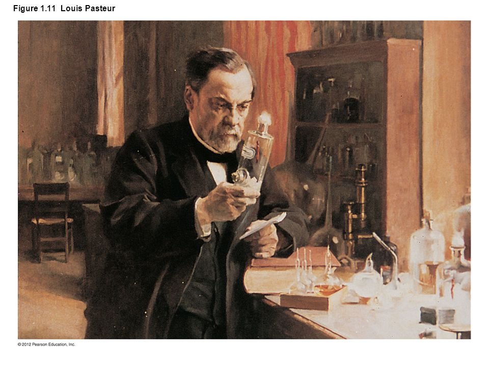 Figure 1.11 Louis Pasteur