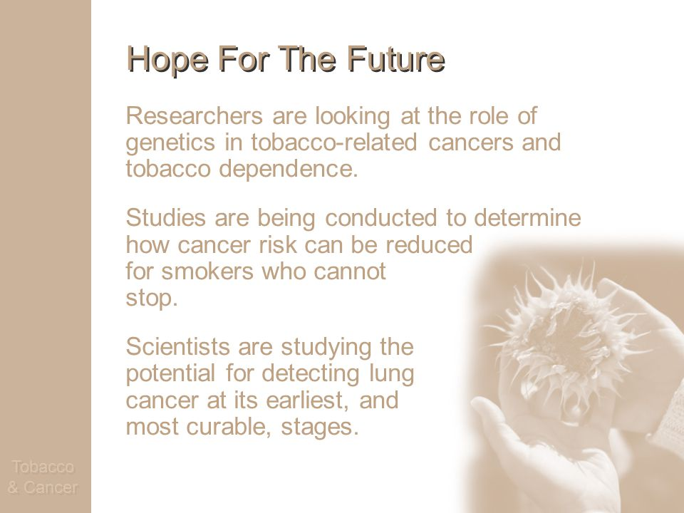 Tobacco & Cancer Hope For The Future Researchers are looking at the role of genetics in tobacco-related cancers and tobacco dependence.