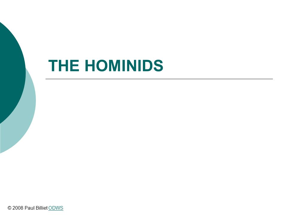 THE HOMINIDS © 2008 Paul Billiet ODWSODWS