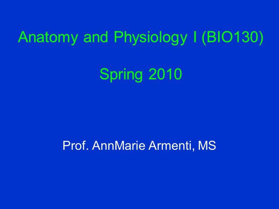 Anatomy and Physiology I (BIO130) Spring 2010 Prof. AnnMarie Armenti, MS