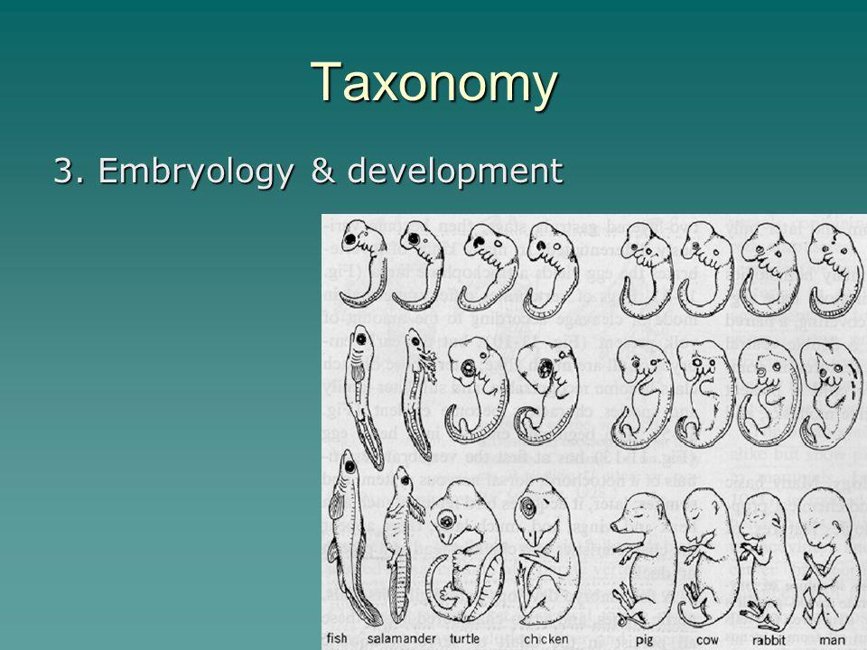 Taxonomy 3. Embryology & development