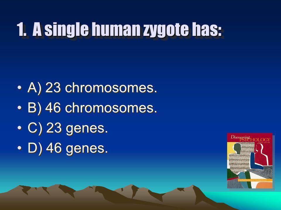 1.A single human zygote has: A) 23 chromosomes. B) 46 chromosomes.