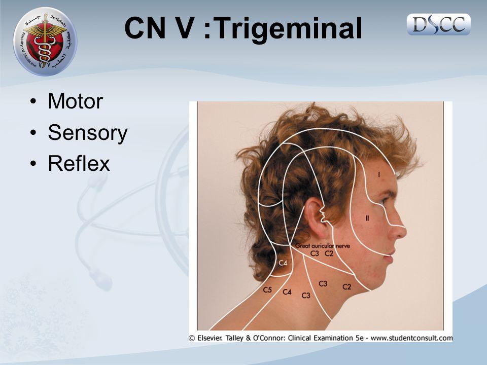 Motor Sensory Reflex CN V: Trigeminal