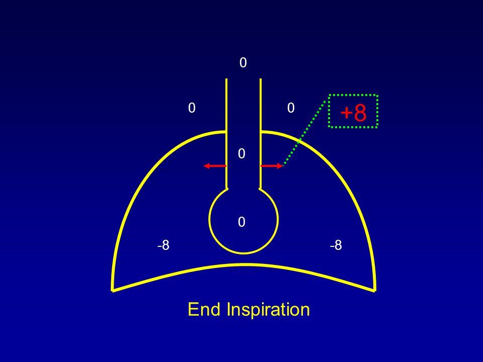 0 00 -8 0 +8 0 End Inspiration
