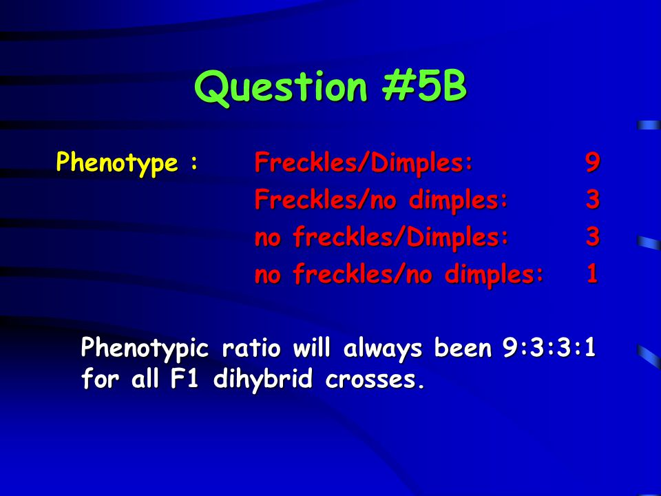 Question #5B Phenotype:Freckles/Dimples:9 Freckles/no dimples:3 no freckles/Dimples:3 no freckles/no dimples:1 Phenotypic ratio will always been 9:3:3