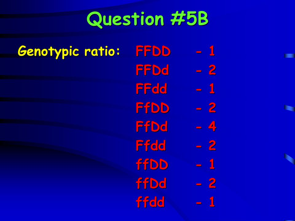 Question #5B Genotypic ratio:FFDD- 1 FFDd- 2 FFdd- 1 FfDD- 2 FfDd- 4 Ffdd- 2 ffDD- 1 ffDd- 2 ffdd- 1