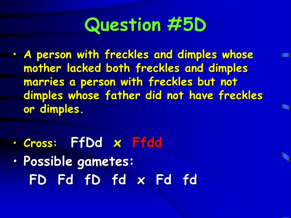 Question #5D A person with freckles and dimples whose mother lacked both freckles and dimples marries a person with freckles but not dimples whose fat