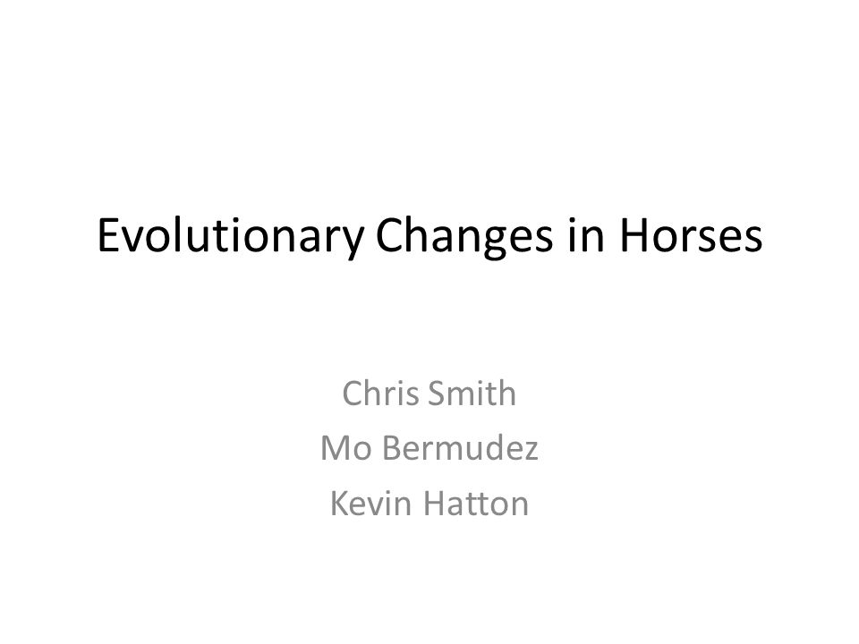 Evolutionary Changes in Horses Chris Smith Mo Bermudez Kevin Hatton