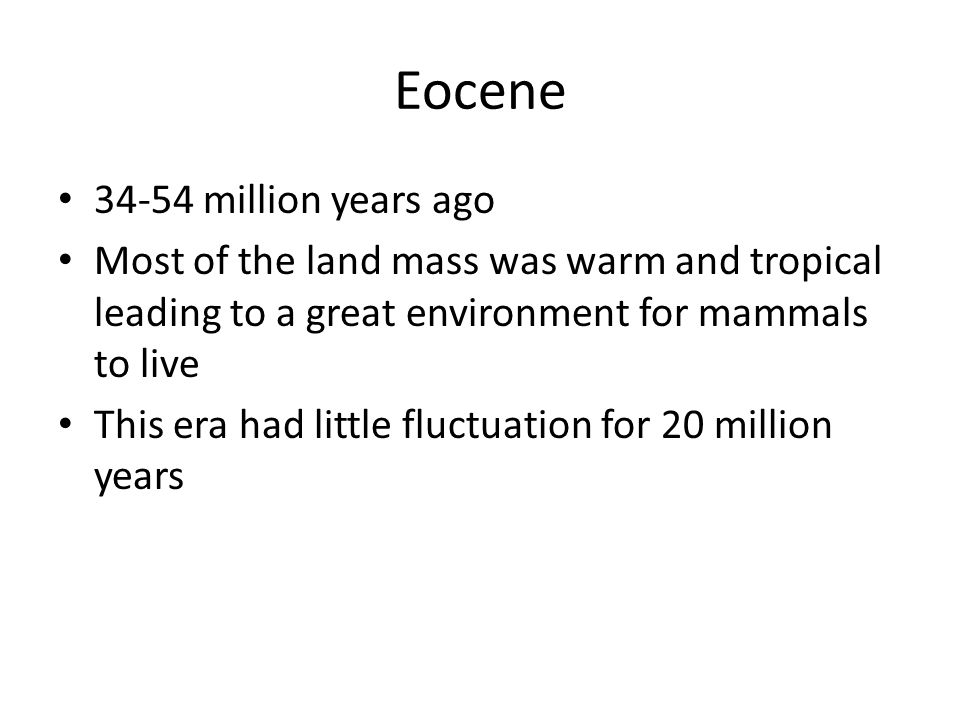 Eocene 34-54 million years ago Most of the land mass was warm and tropical leading to a great environment for mammals to live This era had little fluctuation for 20 million years