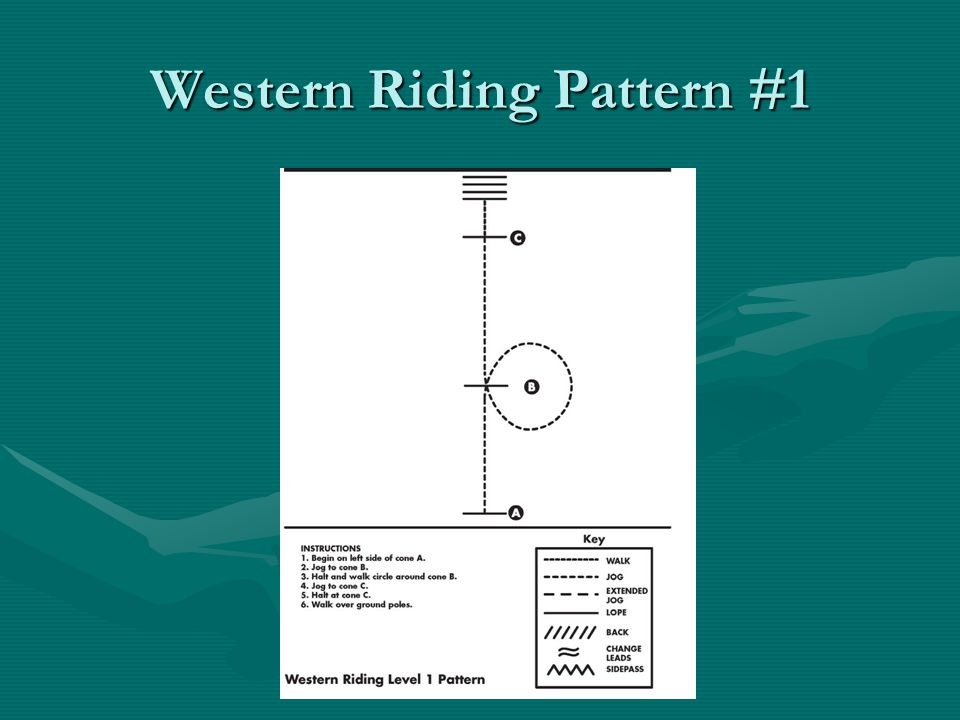 Western Riding Pattern #1