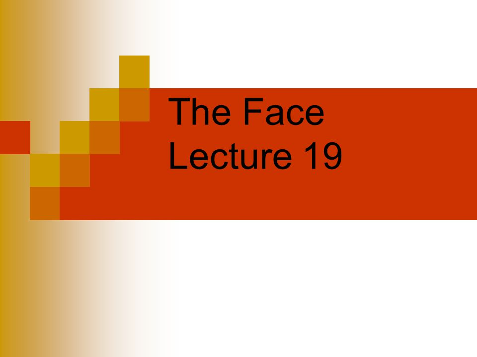 The Face Lecture 19