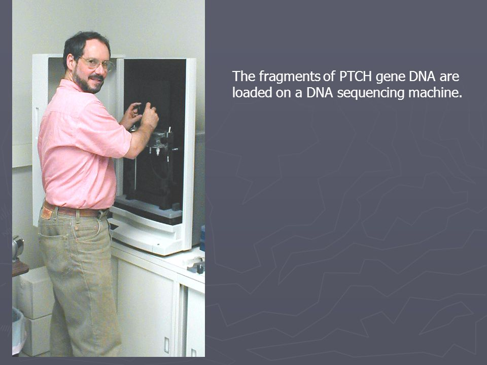 The fragments of PTCH gene DNA are loaded on a DNA sequencing machine.