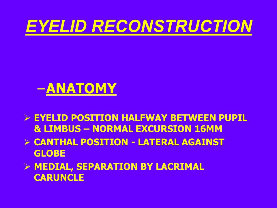 EYELID RECONSTRUCTION –ANATOMY  EYELID POSITION HALFWAY BETWEEN PUPIL & LIMBUS – NORMAL EXCURSION 16MM  CANTHAL POSITION - LATERAL AGAINST GLOBE  MEDIAL, SEPARATION BY LACRIMAL CARUNCLE