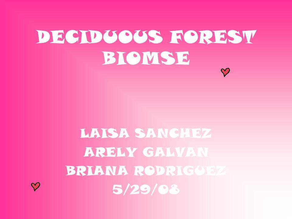 DECIDUOUS FOREST BIOMSE LAISA SANCHEZ ARELY GALVAN BRIANA RODRIGUEZ 5/29/08