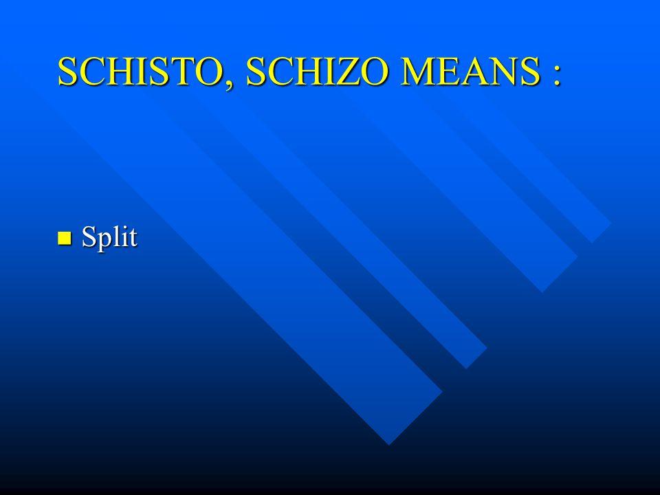 SCHISTO, SCHIZO MEANS : Split Split