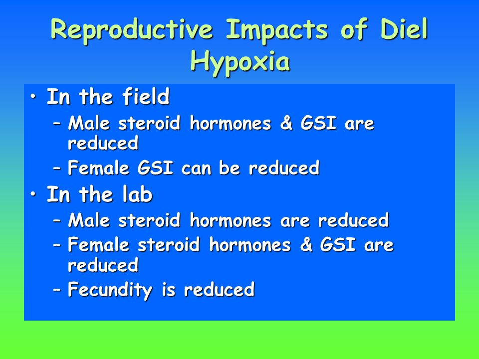 Reproductive Impacts of Diel Hypoxia In the fieldIn the field –Male steroid hormones & GSI are reduced –Female GSI can be reduced In the labIn the lab