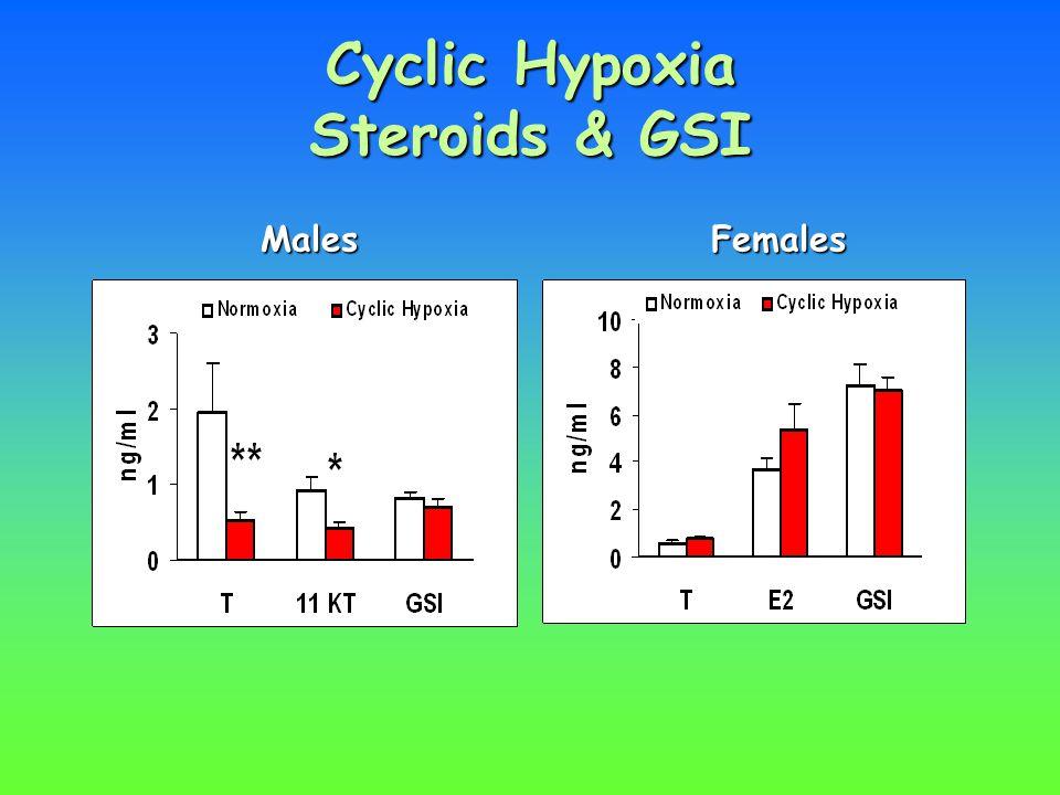 Cyclic Hypoxia Steroids & GSI MalesFemales