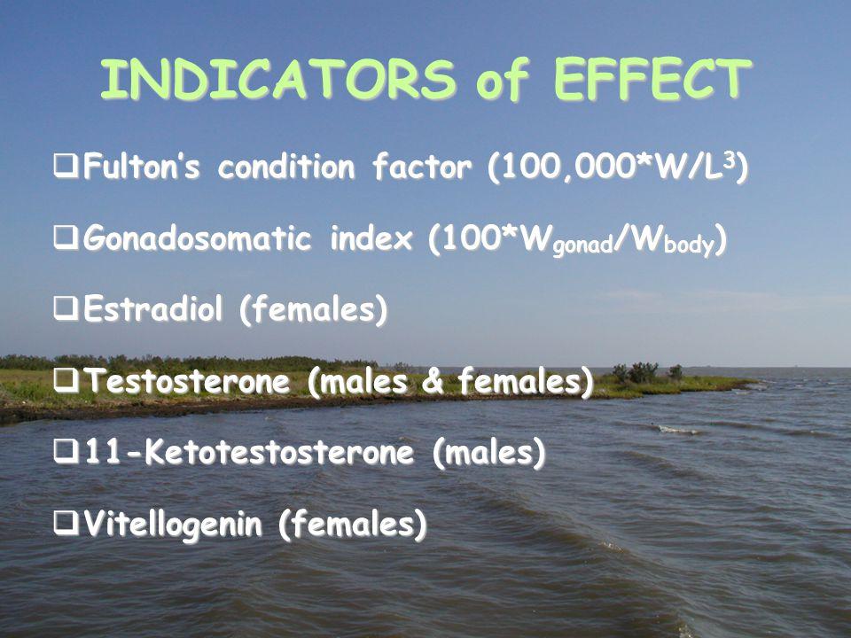 INDICATORS of EFFECT  Fulton's condition factor (100,000*W/L 3 )  Gonadosomatic index (100*W gonad /W body )  Estradiol (females)  Testosterone (m