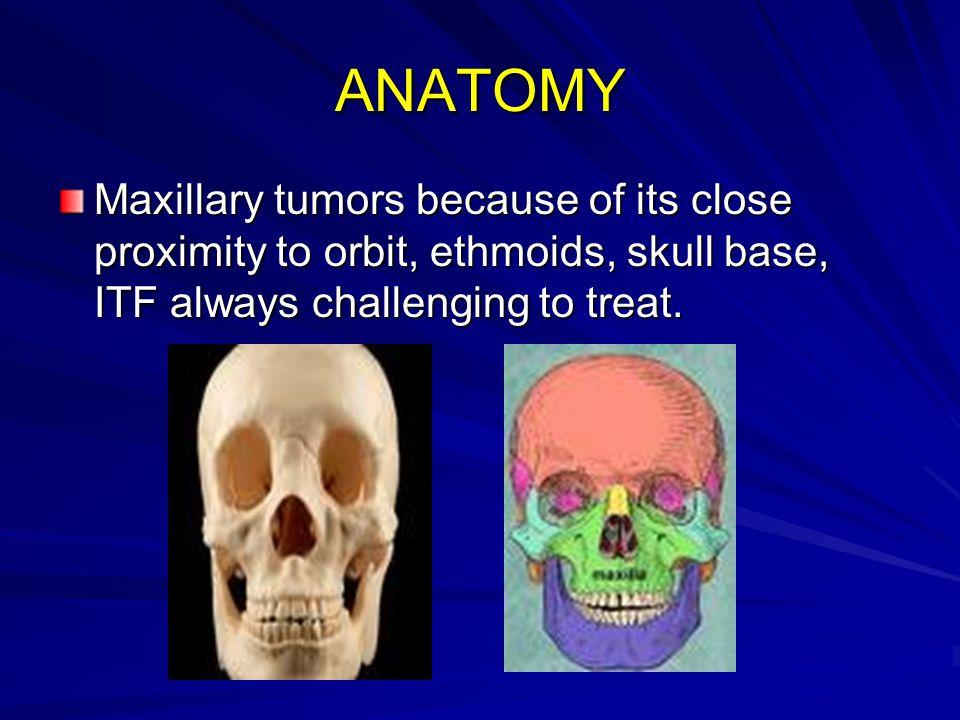 ANATOMY Maxillary tumors because of its close proximity to orbit, ethmoids, skull base, ITF always challenging to treat.