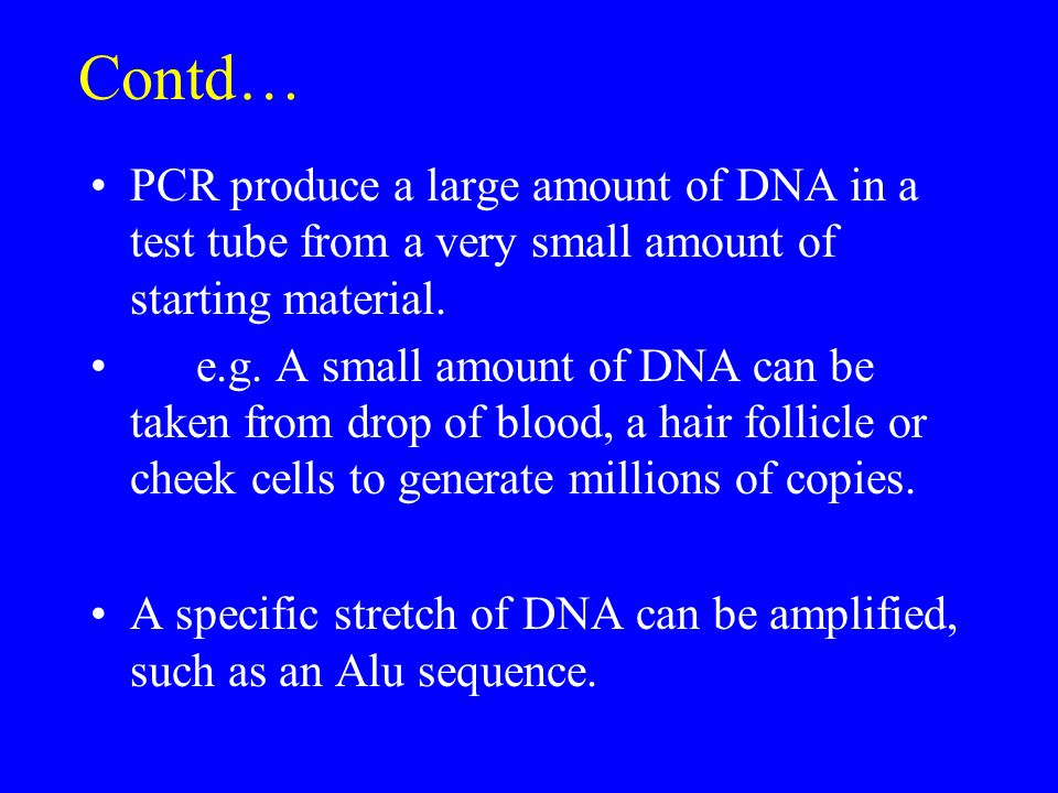 Contd… PCR produce a large amount of DNA in a test tube from a very small amount of starting material.