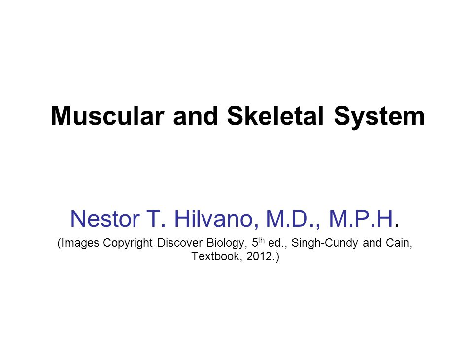Muscular and Skeletal System Nestor T. Hilvano, M.D., M.P.H. (Images Copyright Discover Biology, 5 th ed., Singh-Cundy and Cain, Textbook, 2012.)
