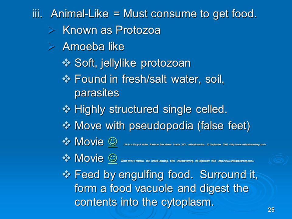 25 iii.Animal-Like = Must consume to get food.  Known as Protozoa  Amoeba like  Soft, jellylike protozoan  Found in fresh/salt water, soil, parasi