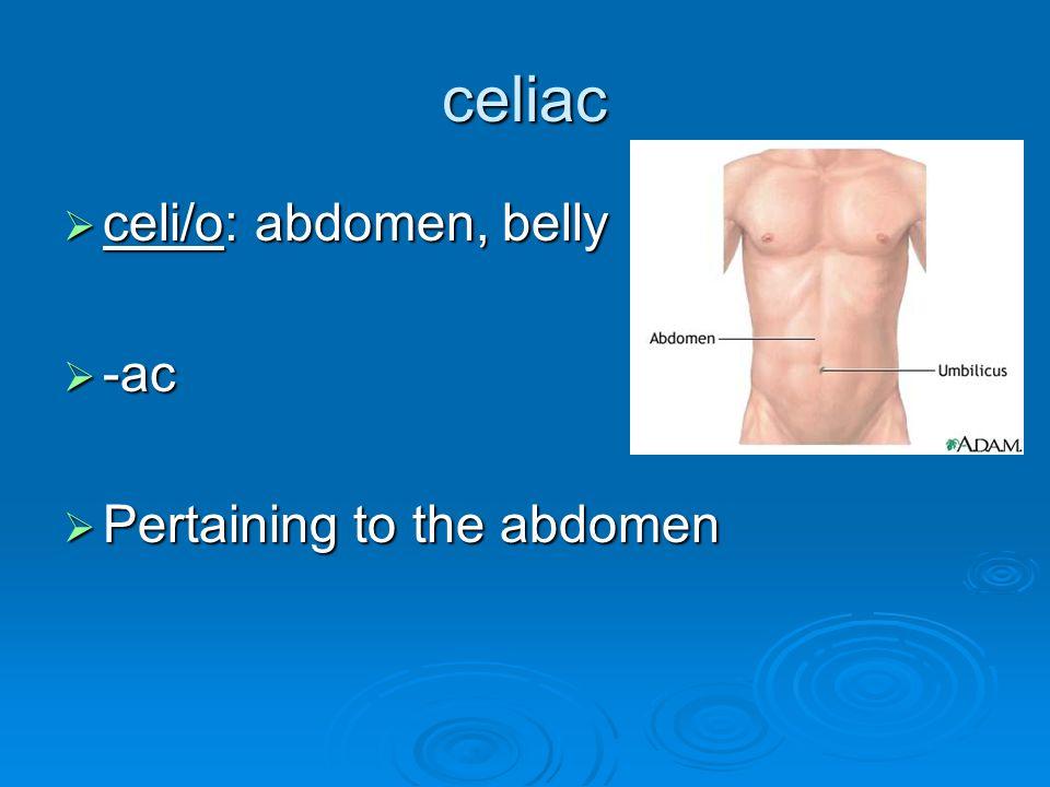 celiac  celi/o: abdomen, belly  -ac  Pertaining to the abdomen
