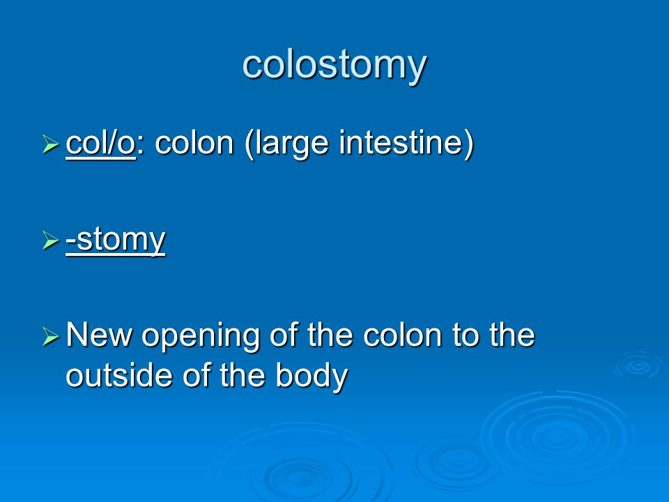 colostomy  col/o: colon (large intestine)  -stomy  New opening of the colon to the outside of the body