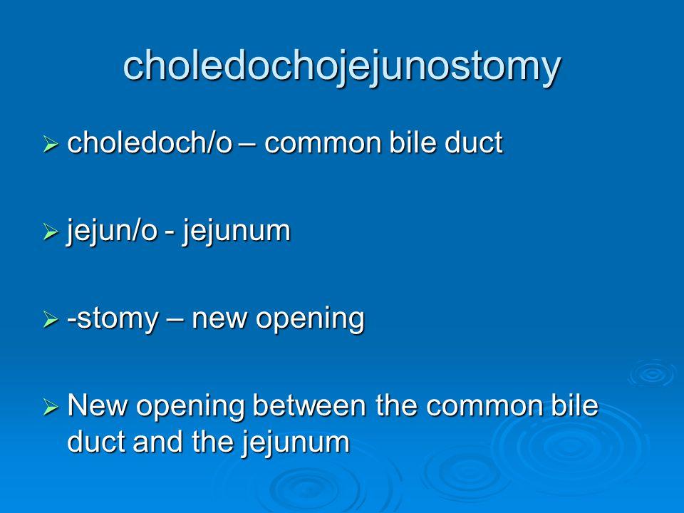 choledochojejunostomy  choledoch/o – common bile duct  jejun/o - jejunum  -stomy – new opening  New opening between the common bile duct and the jejunum