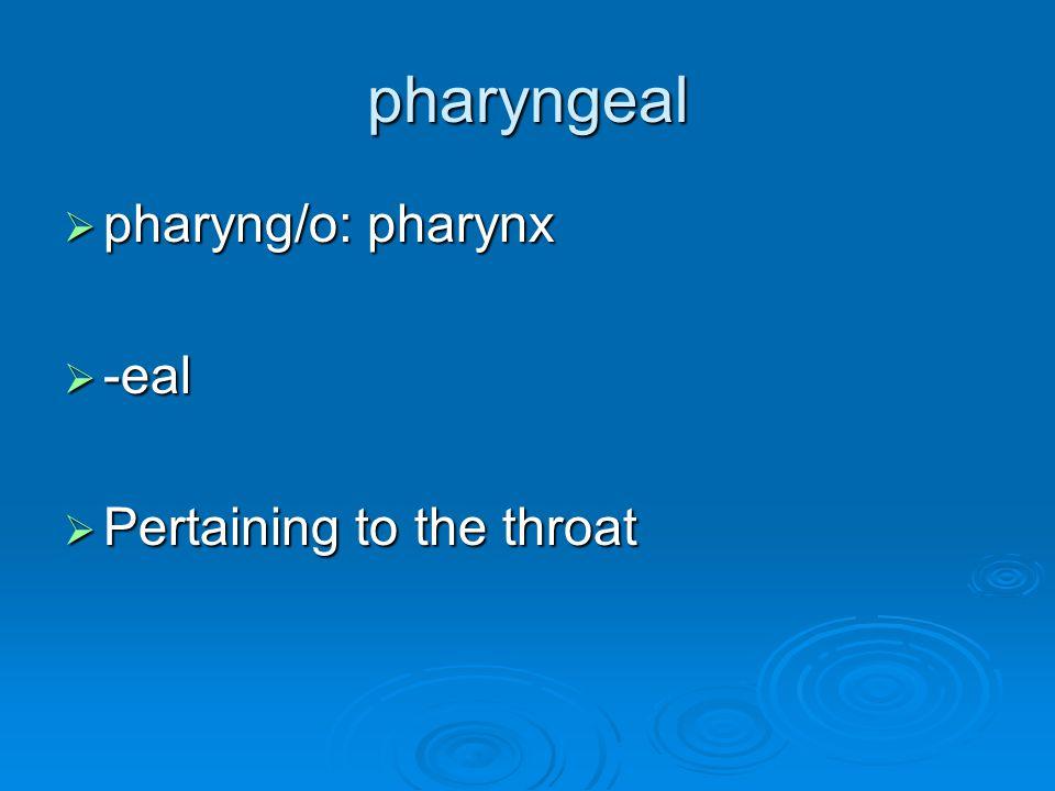 pharyngeal  pharyng/o: pharynx  -eal  Pertaining to the throat