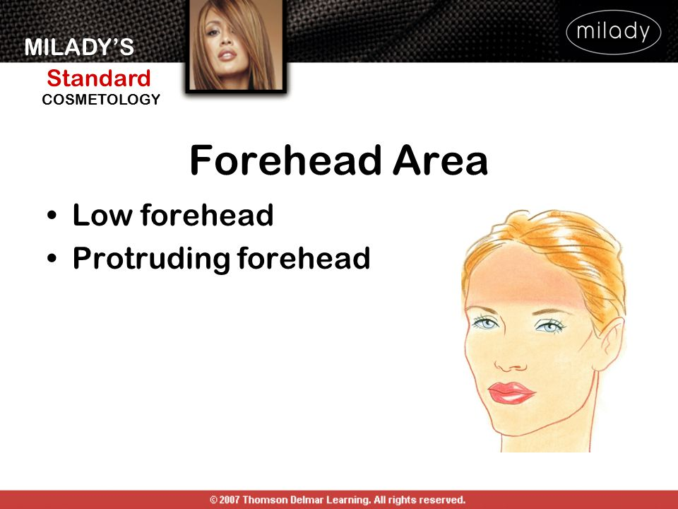 MILADY'S Standard Instructor Support Slides COSMETOLOGY Forehead Area Low forehead Protruding forehead