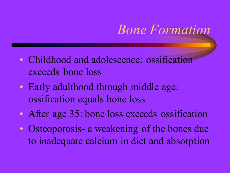 Bone Formation Childhood and adolescence: ossification exceeds bone loss Early adulthood through middle age: ossification equals bone loss After age 3