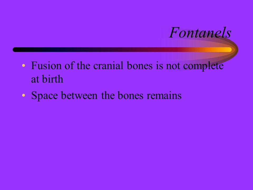 Fontanels Fusion of the cranial bones is not complete at birth Space between the bones remains