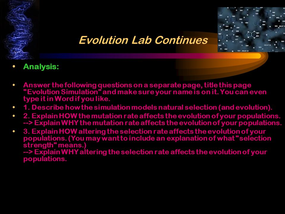 Evolution Lab Continues The Simulations Simulation A – The purpose of this simulation is to determine how the mutation rate affects the evolution of your population.