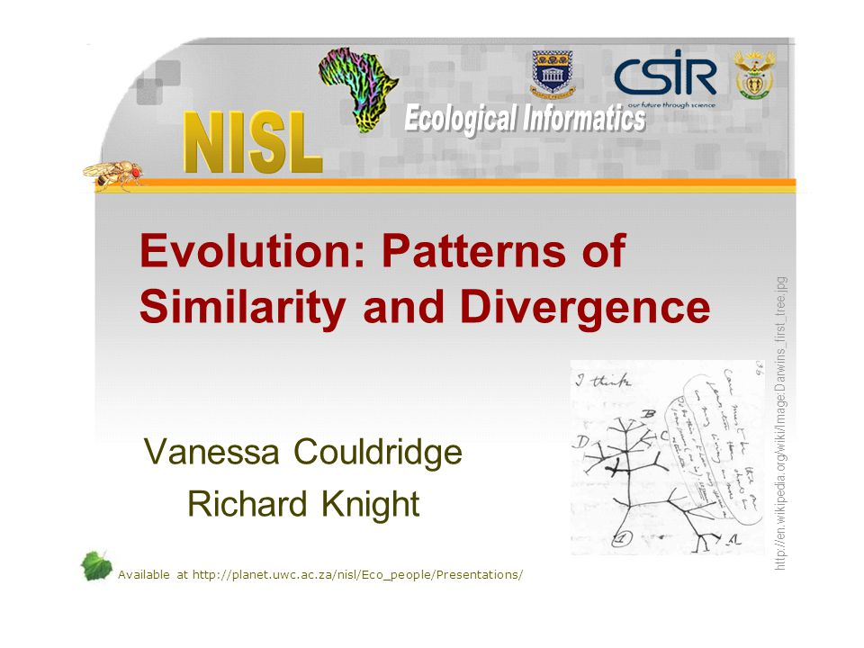 Available at http://planet.uwc.ac.za/nisl/Eco_people/Presentations/ Evolution: Patterns of Similarity and Divergence Vanessa Couldridge Richard Knight
