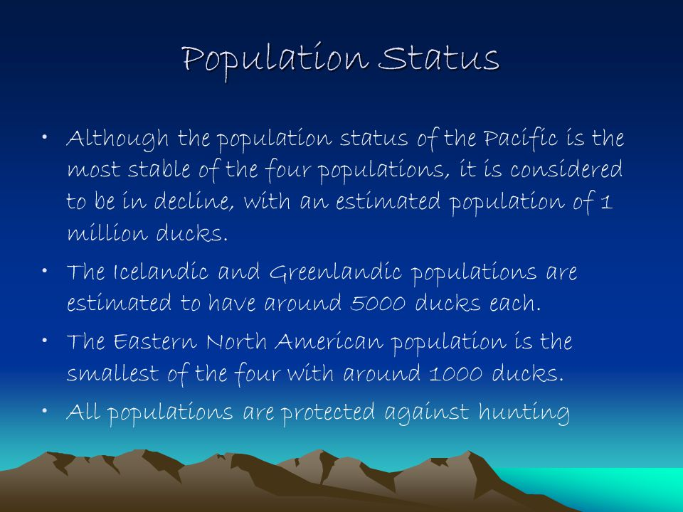 Population Status Although the population status of the Pacific is the most stable of the four populations, it is considered to be in decline, with an estimated population of 1 million ducks.