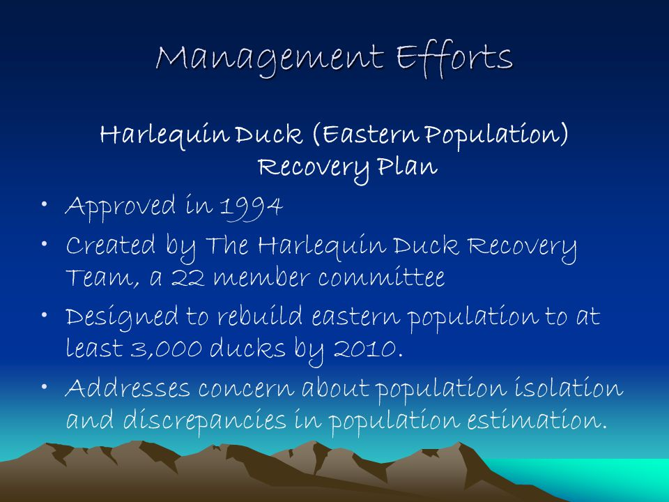 Management Efforts Harlequin Duck (Eastern Population) Recovery Plan Approved in 1994 Created by The Harlequin Duck Recovery Team, a 22 member committee Designed to rebuild eastern population to at least 3,000 ducks by 2010.