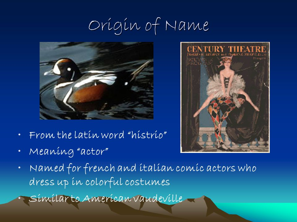 Origin of Name From the latin word histrio Meaning actor Named for french and italian comic actors who dress up in colorful costumes Similar to American vaudeville