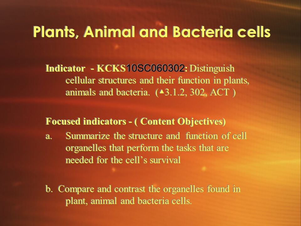 Plants, Animal and Bacteria cells Indicator - KCKS 10SC060302 : Distinguish cellular structures and their function in plants, animals and bacteria.