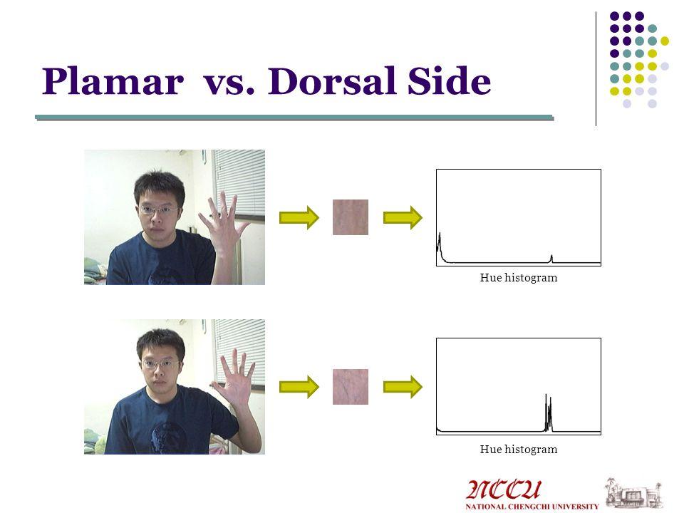 Plamar vs. Dorsal Side Hue histogram